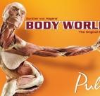 California Science Center presents: Body Worlds: Pulse Open Now thru Feb. 20, 2018