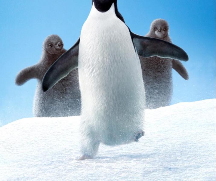 Disney Nature Presents Penguins | Q & A w/producer Roy Conli